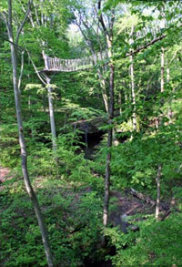 Hocking Hills Canopy Tours and Zipline Tours