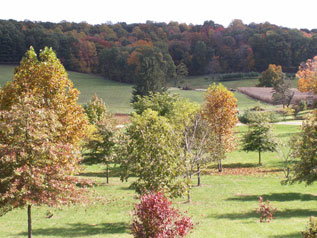 Hocking Hills Cabin Rentals-Pleasant Valley